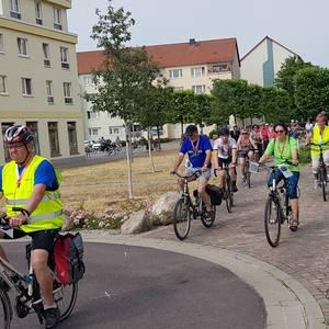 Umfrage zur Entwicklung des Zerbster Radtourismus